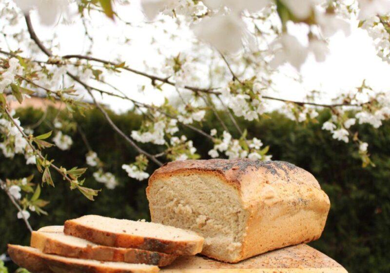 3 1 1024x683 800x560 Pokaz wypieku chleba