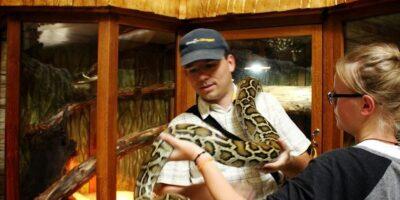 Kto zNas niechciałby wziąć węża naręce imóc zrobić sobie znim zdjęcie? Taką właśnie możliwość zapewnia Park Edukacyjny Zoo- Egzotyczne wTuchlinie. Egzotyczne gatunki zwierząt, nowoczesne kino 3D totylkoczęść atrakcji jakie czeka naCiebie wtym miejscu. Odległość: 22 km